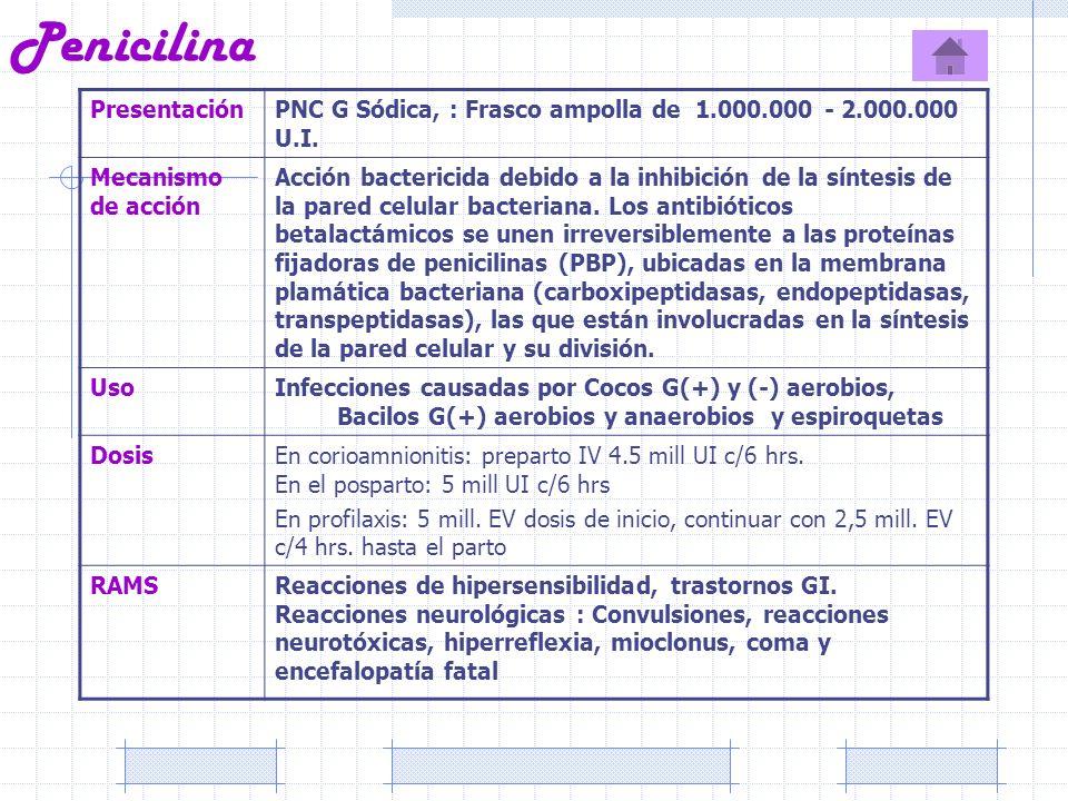 Penicilina Presentación