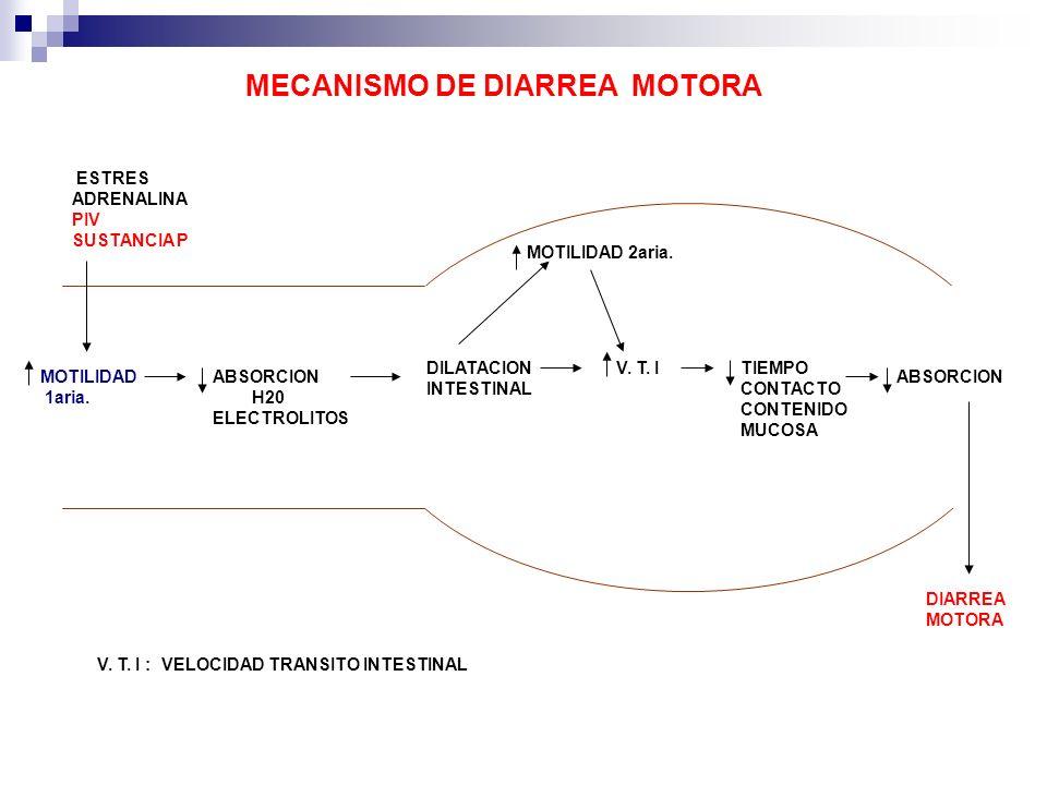 MECANISMO DE DIARREA MOTORA