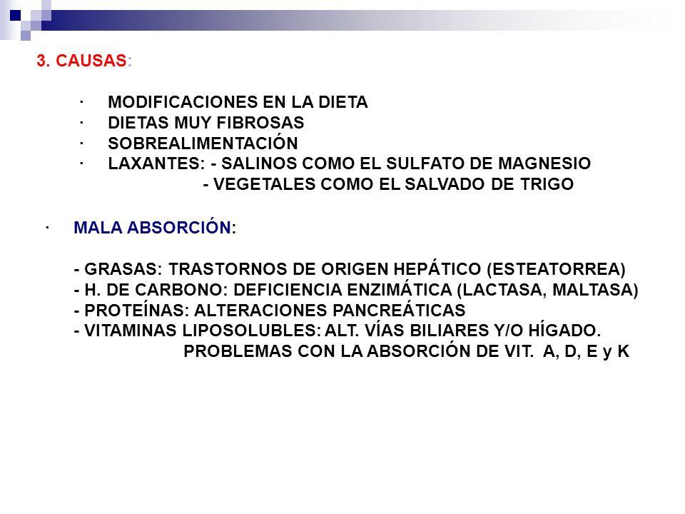 3. CAUSAS: · MODIFICACIONES EN LA DIETA. · DIETAS MUY FIBROSAS. · SOBREALIMENTACIÓN.