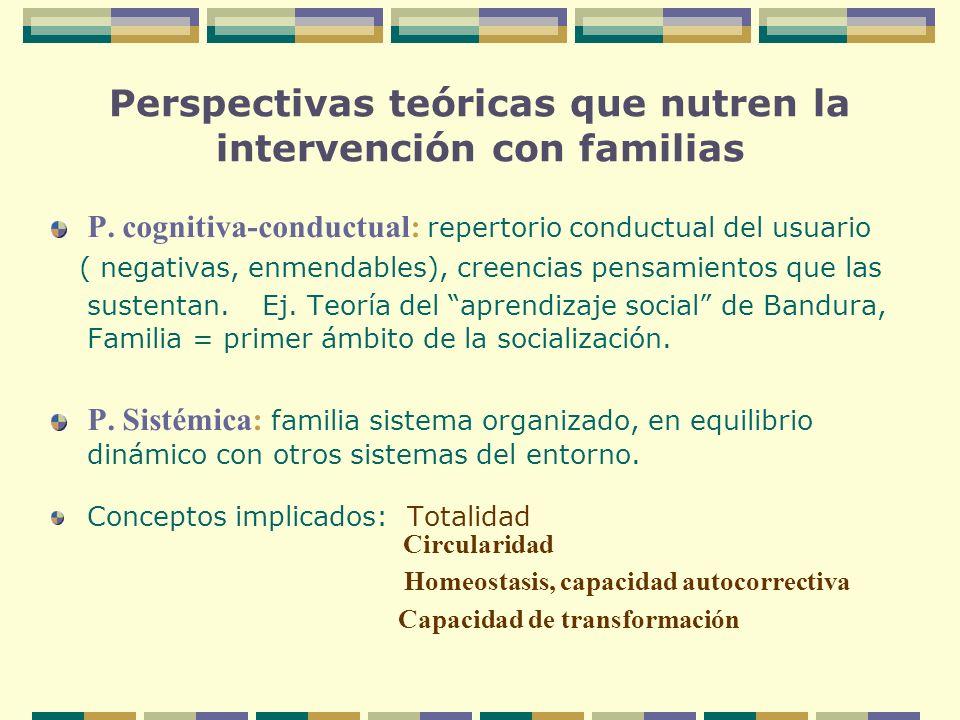 Perspectivas teóricas que nutren la intervención con familias