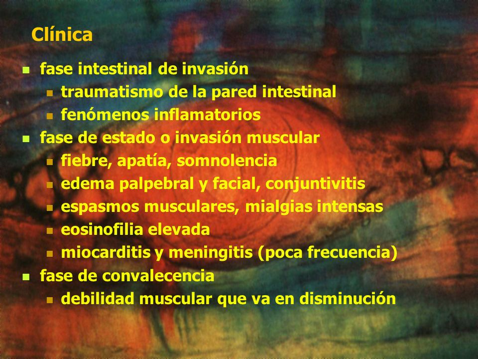 Clínica fase intestinal de invasión traumatismo de la pared intestinal