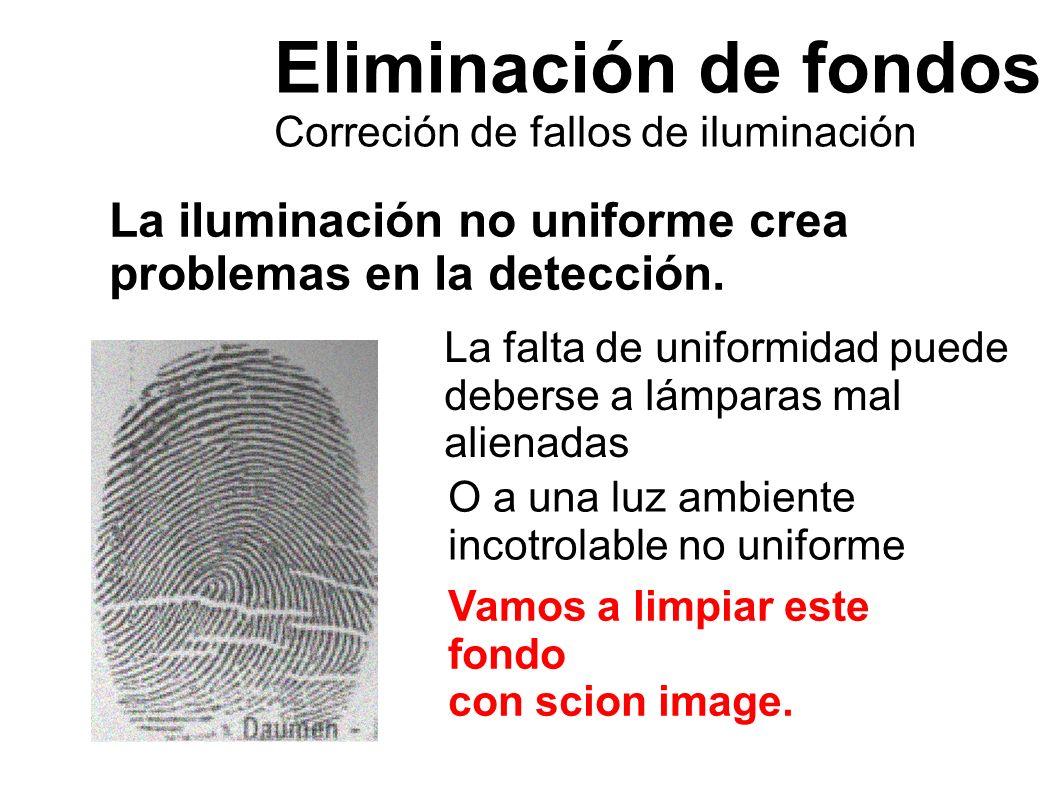 Eliminación de fondos Correción de fallos de iluminación. La iluminación no uniforme crea problemas en la detección.