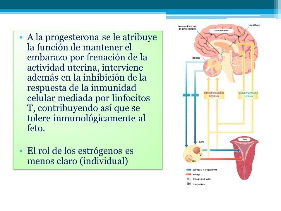 A la progesterona se le atribuye la función de mantener el embarazo por frenación de la actividad uterina, interviene además en la inhibición de la respuesta de la inmunidad celular mediada por linfocitos T, contribuyendo así que se tolere inmunológicamente al feto.