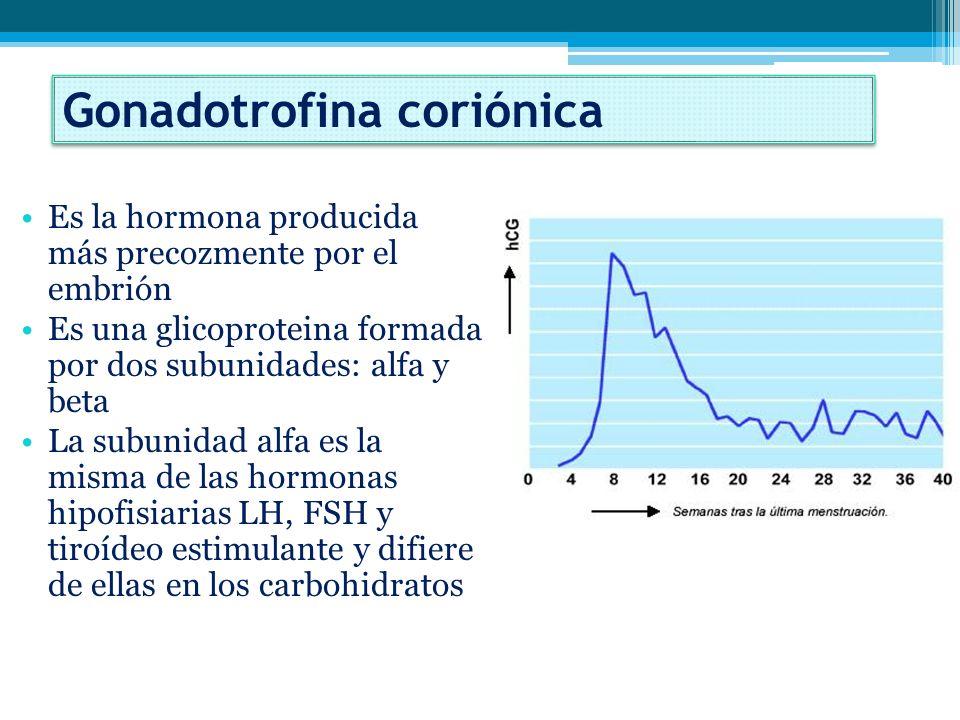 Gonadotrofina coriónica