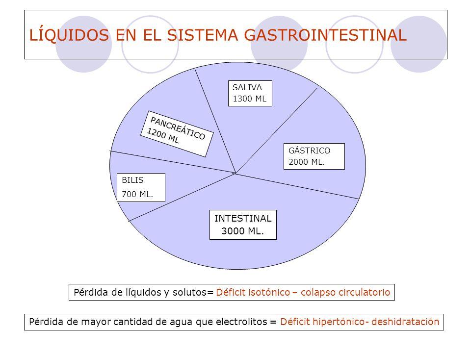 LÍQUIDOS EN EL SISTEMA GASTROINTESTINAL