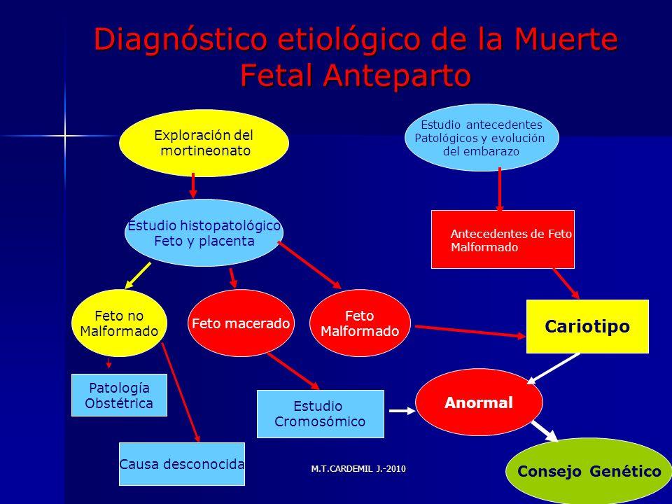 Diagnóstico etiológico de la Muerte Fetal Anteparto