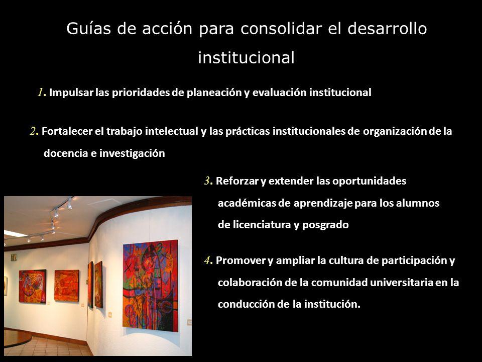 Guías de acción para consolidar el desarrollo institucional