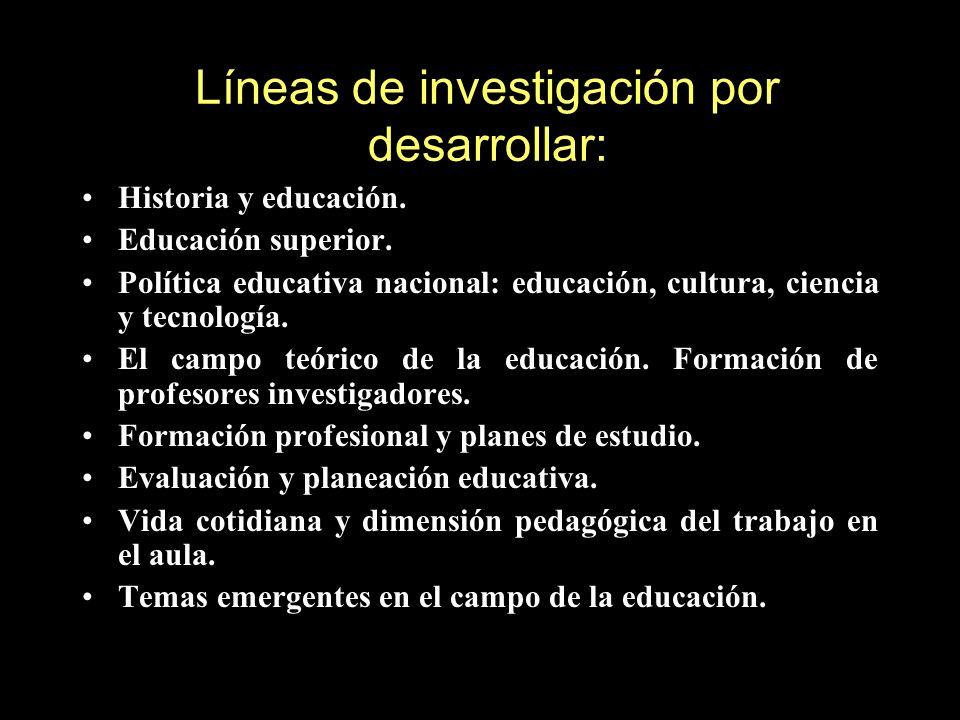 Líneas de investigación por desarrollar: