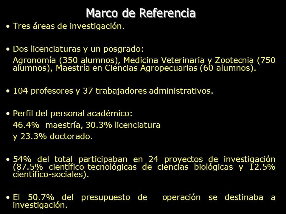 Marco de Referencia Tres áreas de investigación.