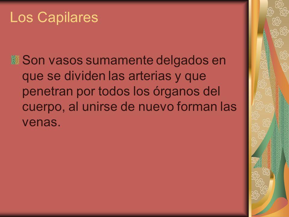 Los Capilares