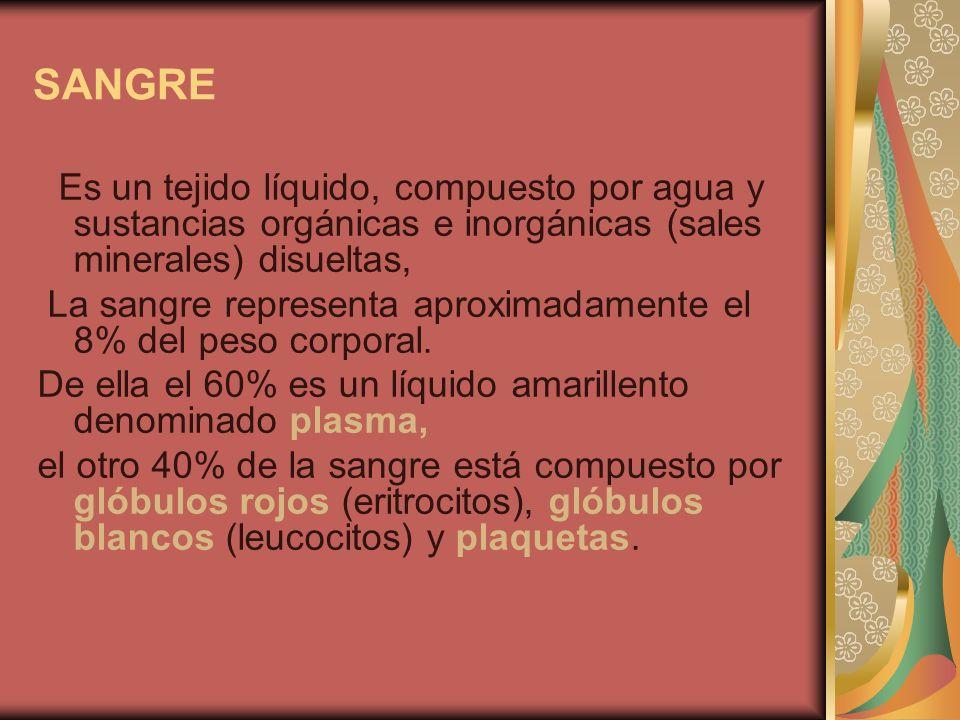 SANGRE Es un tejido líquido, compuesto por agua y sustancias orgánicas e inorgánicas (sales minerales) disueltas,