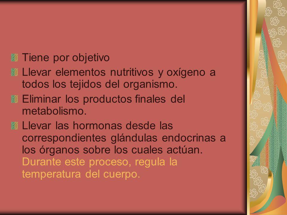 Tiene por objetivo Llevar elementos nutritivos y oxígeno a todos los tejidos del organismo. Eliminar los productos finales del metabolismo.