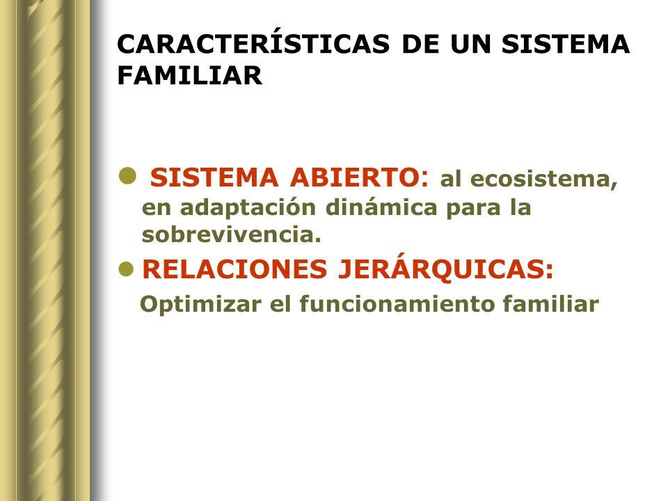 CARACTERÍSTICAS DE UN SISTEMA FAMILIAR