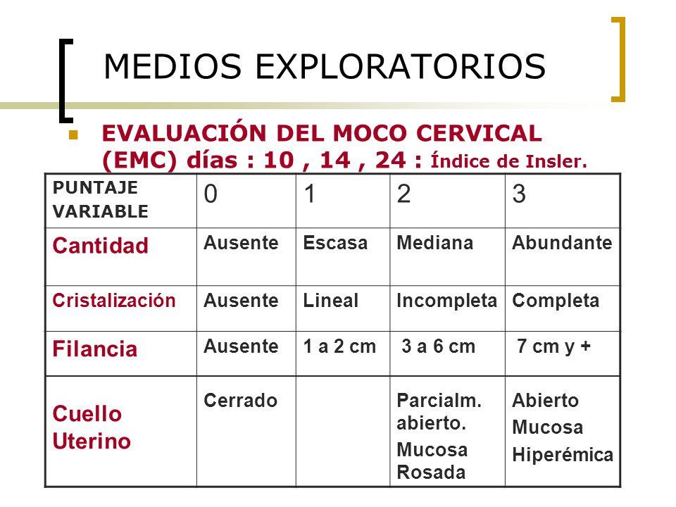 MEDIOS EXPLORATORIOS 1 2 3 Cantidad