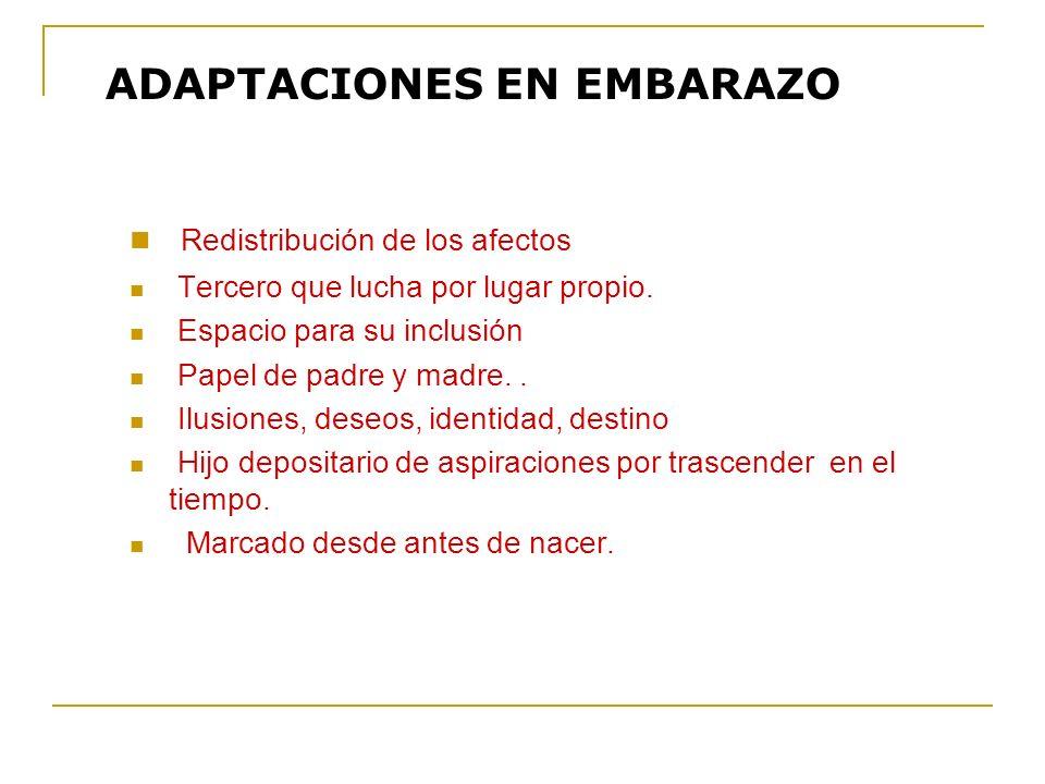 ADAPTACIONES EN EMBARAZO