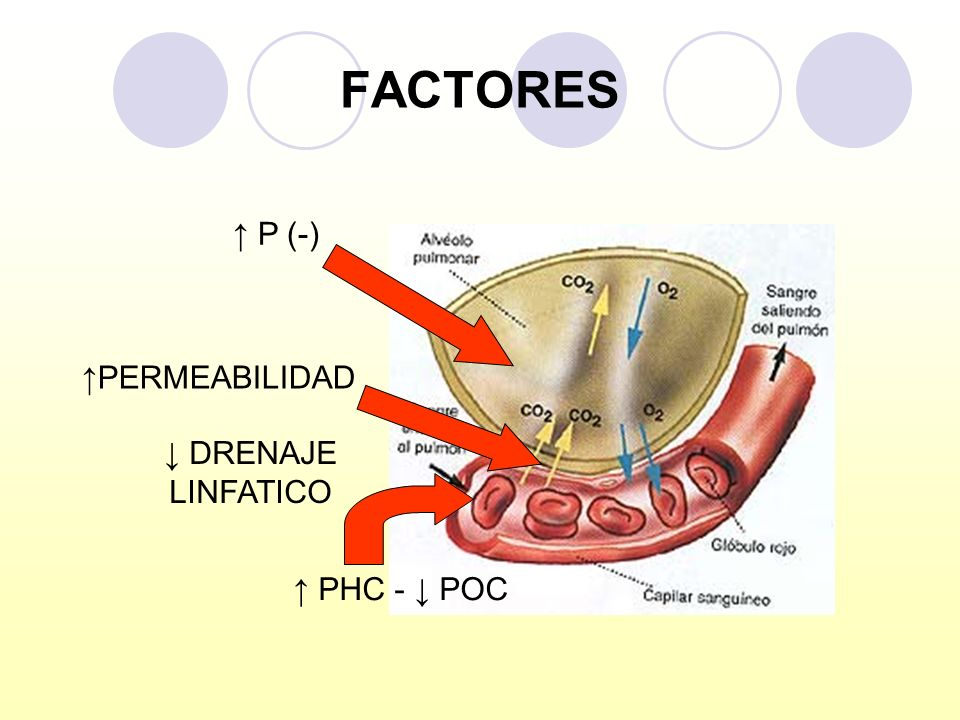 FACTORES ↑ P (-) ↑PERMEABILIDAD ↓ DRENAJE LINFATICO ↑ PHC - ↓ POC