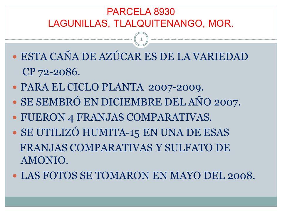 PARCELA 8930 LAGUNILLAS, TLALQUITENANGO, MOR.