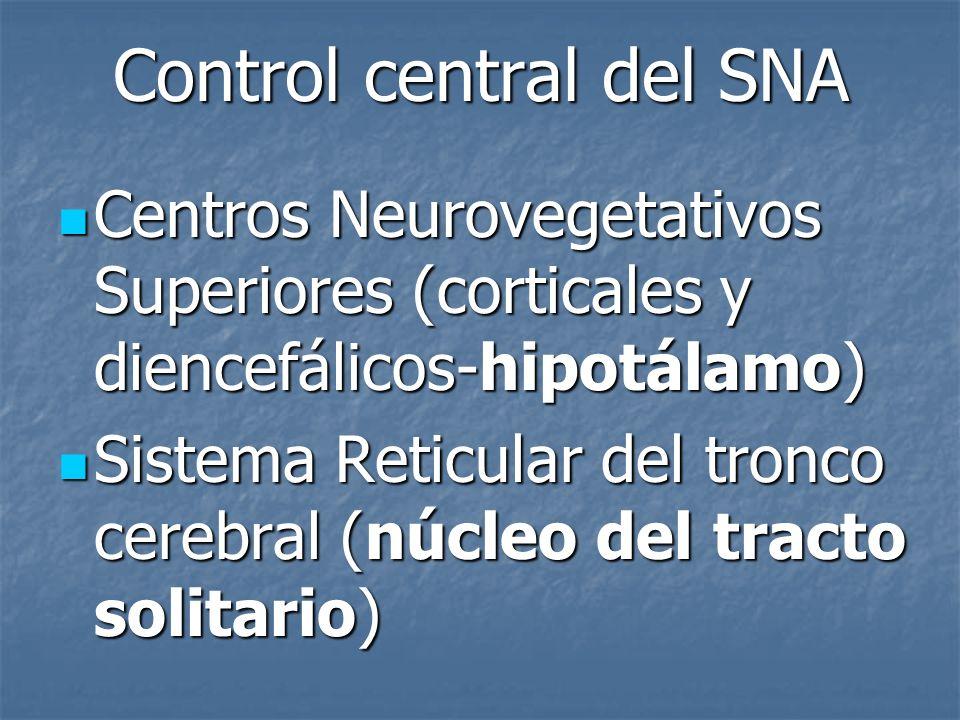Control central del SNA