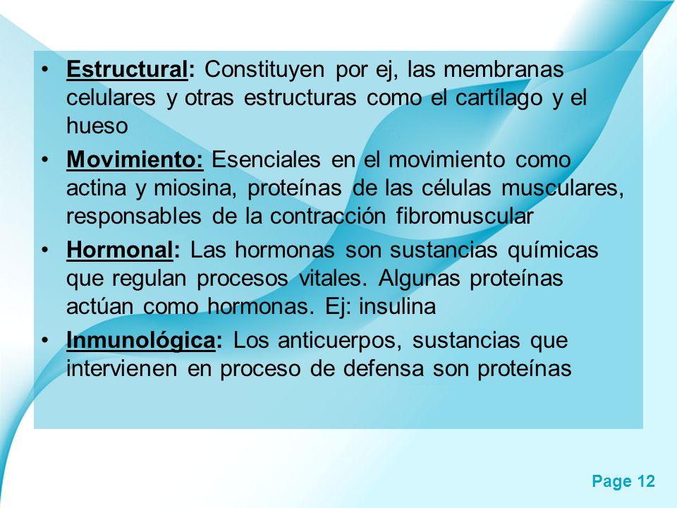 Estructural: Constituyen por ej, las membranas celulares y otras estructuras como el cartílago y el hueso