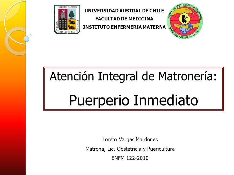 UNIVERSIDAD AUSTRAL DE CHILE INSTITUTO ENFERMERIA MATERNA