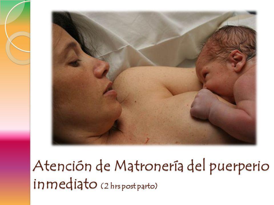 Atención de Matronería del puerperio inmediato (2 hrs post parto)