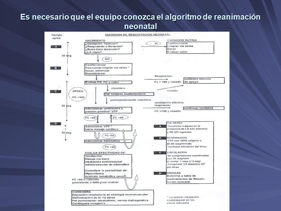 Es necesario que el equipo conozca el algoritmo de reanimación neonatal