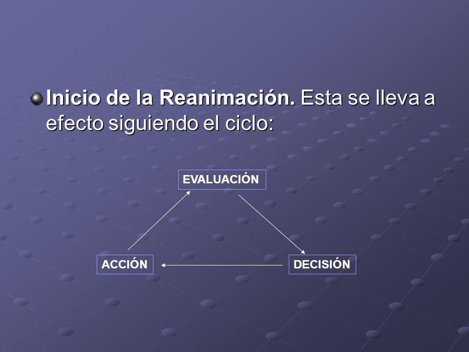 Inicio de la Reanimación. Esta se lleva a efecto siguiendo el ciclo: