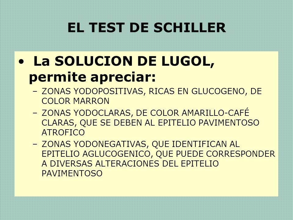 La SOLUCION DE LUGOL, permite apreciar:
