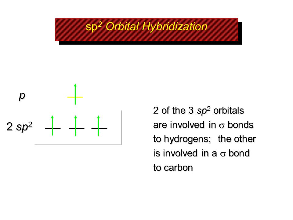 sp2 Orbital Hybridization