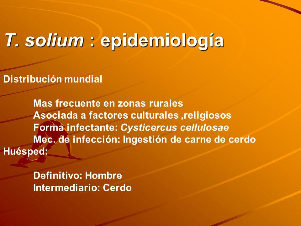 T. solium : epidemiología Distribución mundial