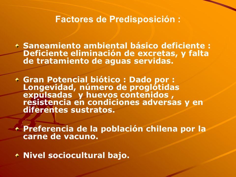 Factores de Predisposición :