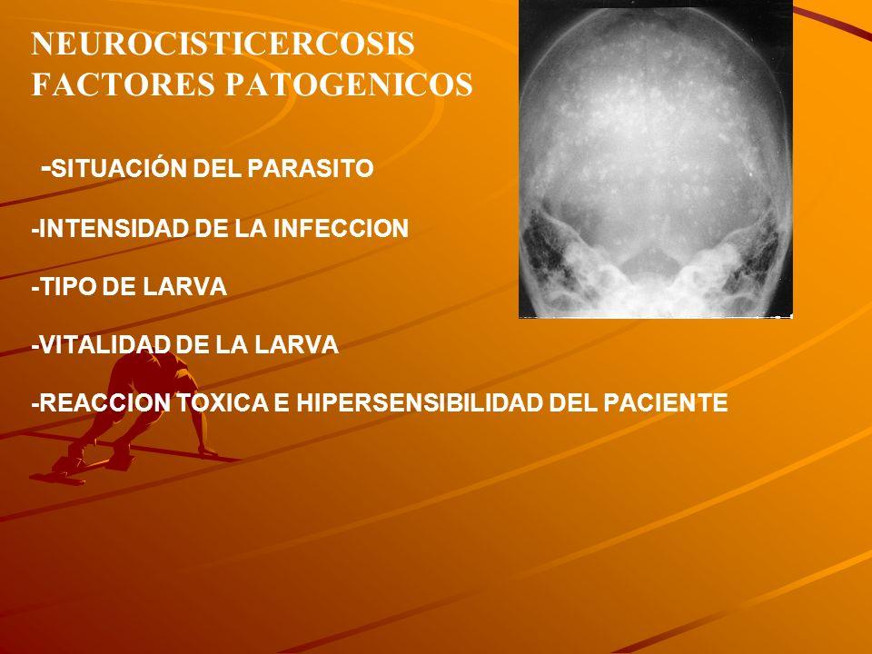 NEUROCISTICERCOSIS FACTORES PATOGENICOS -SITUACIÓN DEL PARASITO -INTENSIDAD DE LA INFECCION -TIPO DE LARVA -VITALIDAD DE LA LARVA -REACCION TOXICA E HIPERSENSIBILIDAD DEL PACIENTE