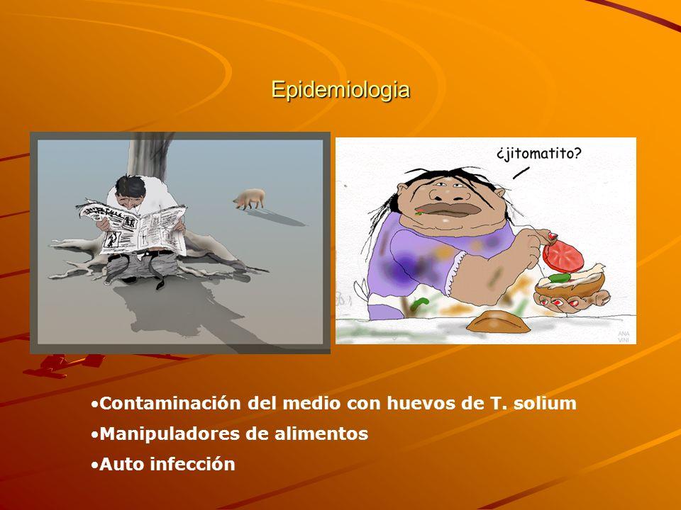 Epidemiologia Contaminación del medio con huevos de T. solium