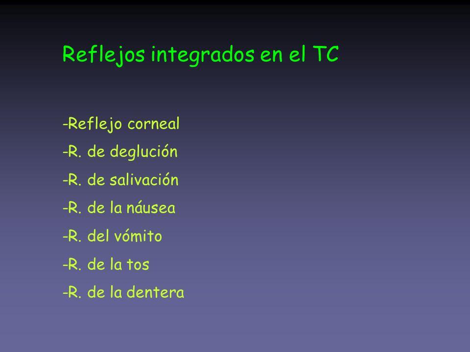 Reflejos integrados en el TC