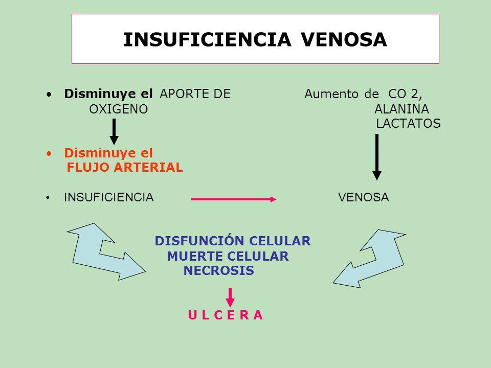 INSUFICIENCIA VENOSA Disminuye el APORTE DE Aumento de CO 2,