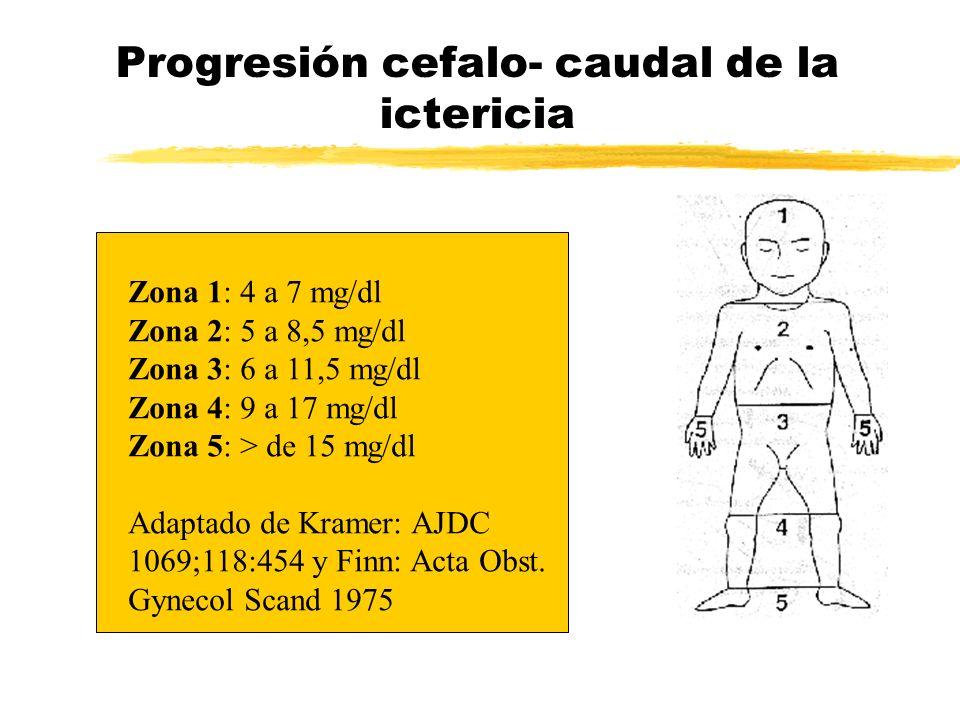 Progresión cefalo- caudal de la ictericia