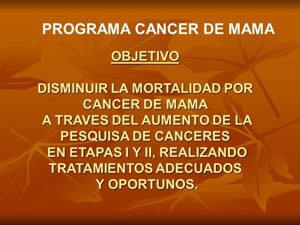 PROGRAMA CANCER DE MAMA