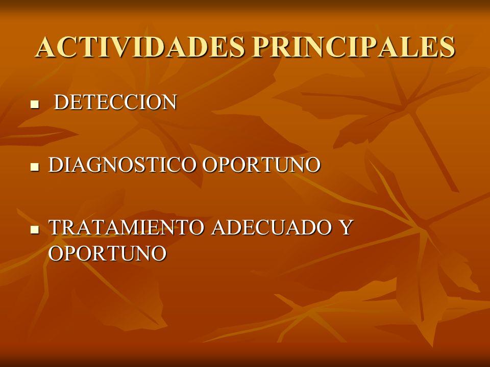 ACTIVIDADES PRINCIPALES