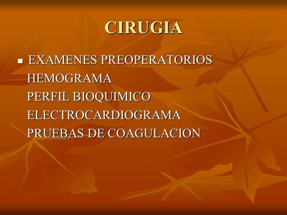 CIRUGIA EXAMENES PREOPERATORIOS HEMOGRAMA PERFIL BIOQUIMICO