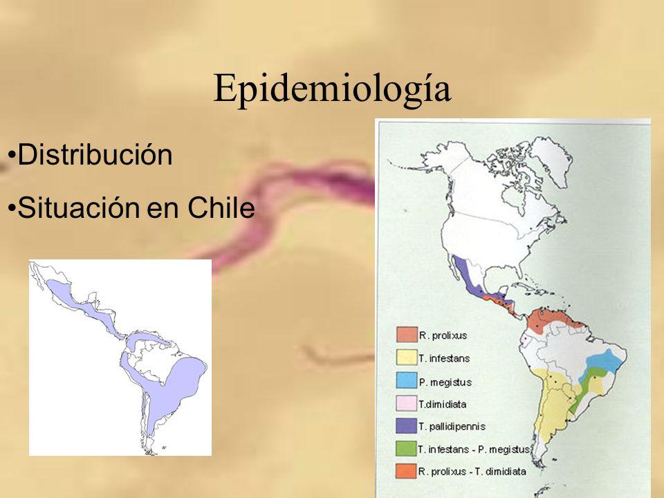Epidemiología Distribución Situación en Chile