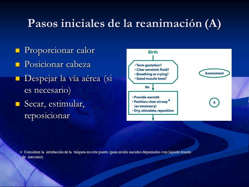 Pasos iniciales de la reanimación (A)