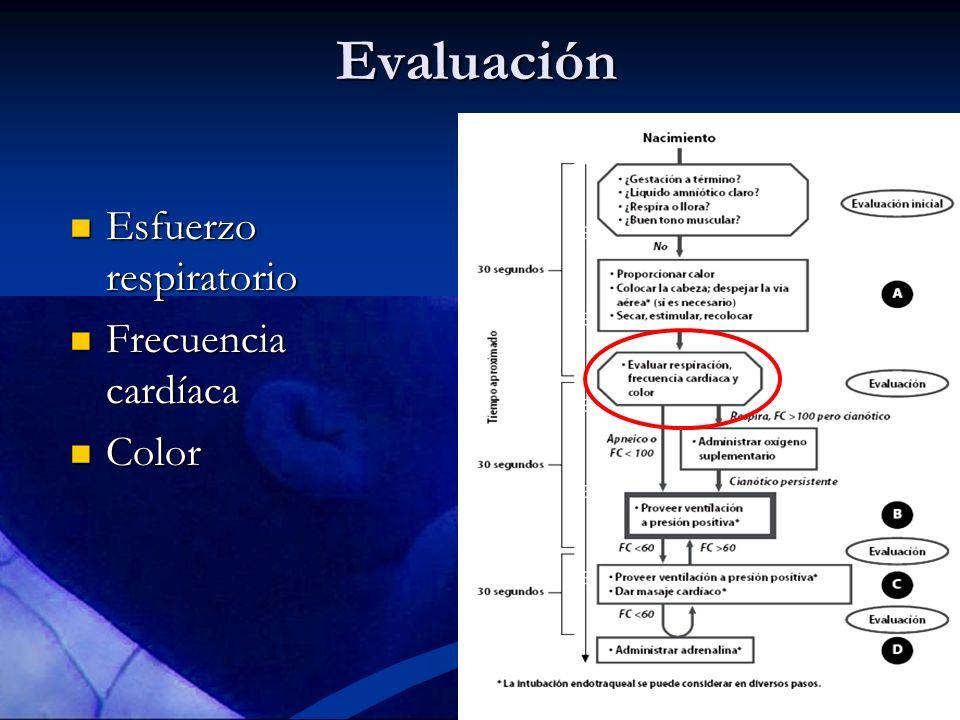 Evaluación Esfuerzo respiratorio Frecuencia cardíaca Color