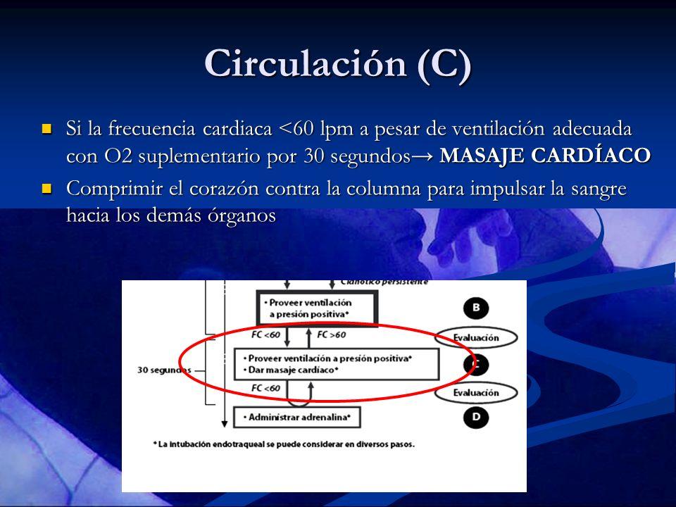 Circulación (C) Si la frecuencia cardiaca <60 lpm a pesar de ventilación adecuada con O2 suplementario por 30 segundos→ MASAJE CARDÍACO.