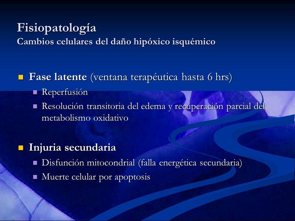 Fisiopatología Cambios celulares del daño hipóxico isquémico
