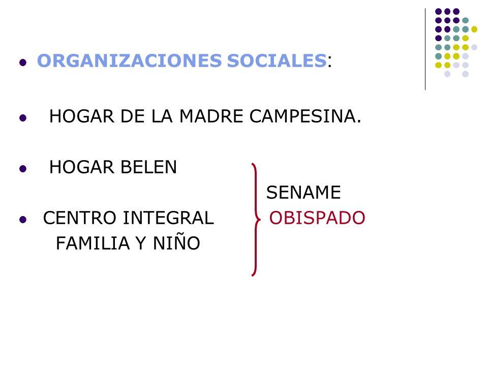 ORGANIZACIONES SOCIALES: