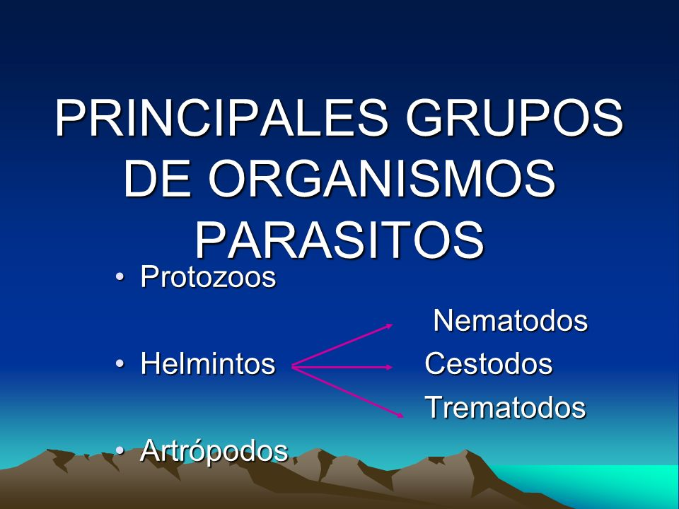 PRINCIPALES GRUPOS DE ORGANISMOS PARASITOS