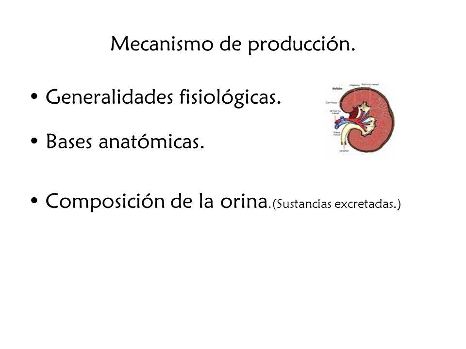 Mecanismo de producción.