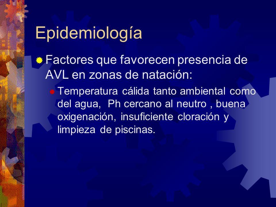 Epidemiología Factores que favorecen presencia de AVL en zonas de natación: