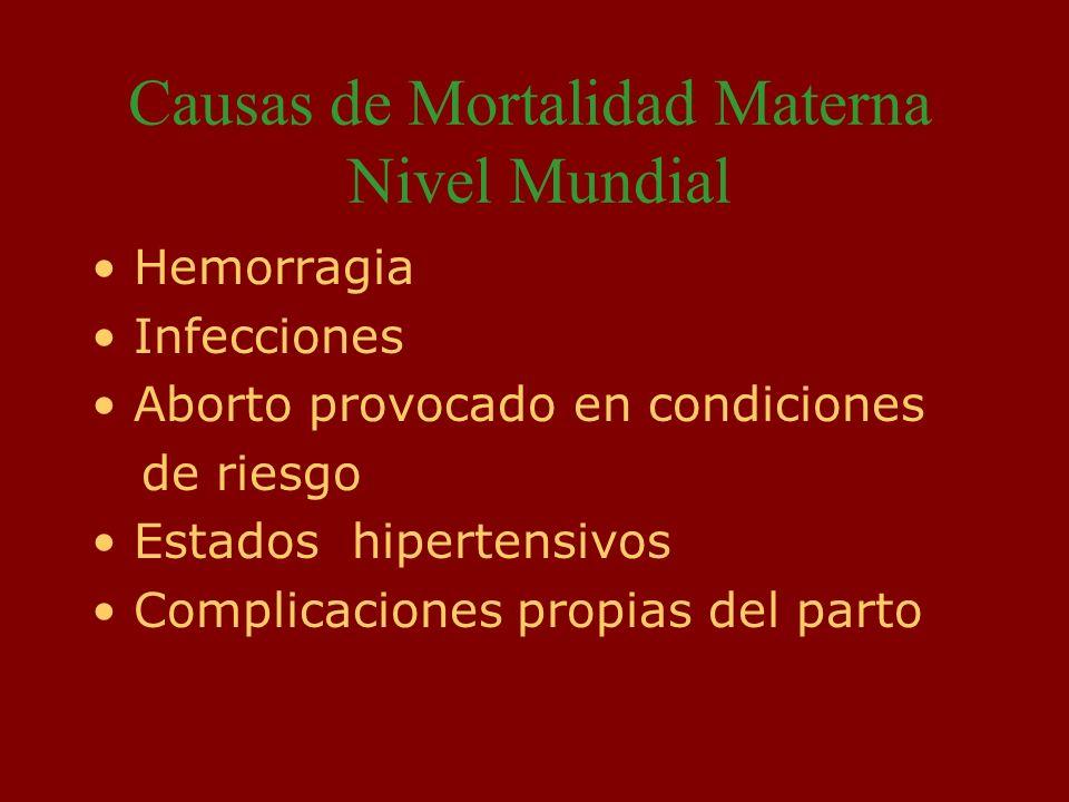 Causas de Mortalidad Materna Nivel Mundial