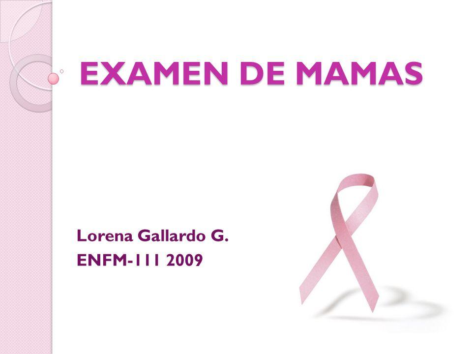Lorena Gallardo G. ENFM-111 2009